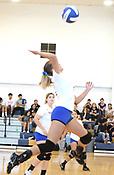 2019 Decatur Volleyball
