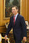 King Felipe VI of Spain receives Supreme Tribunal and Justice General Conceil President Carlos Lesmes Serrano during an audience at Zaruzela Palace in Madrid, Spain. June 23, 2013. (ALTERPHOTOS/Victor Blanco)