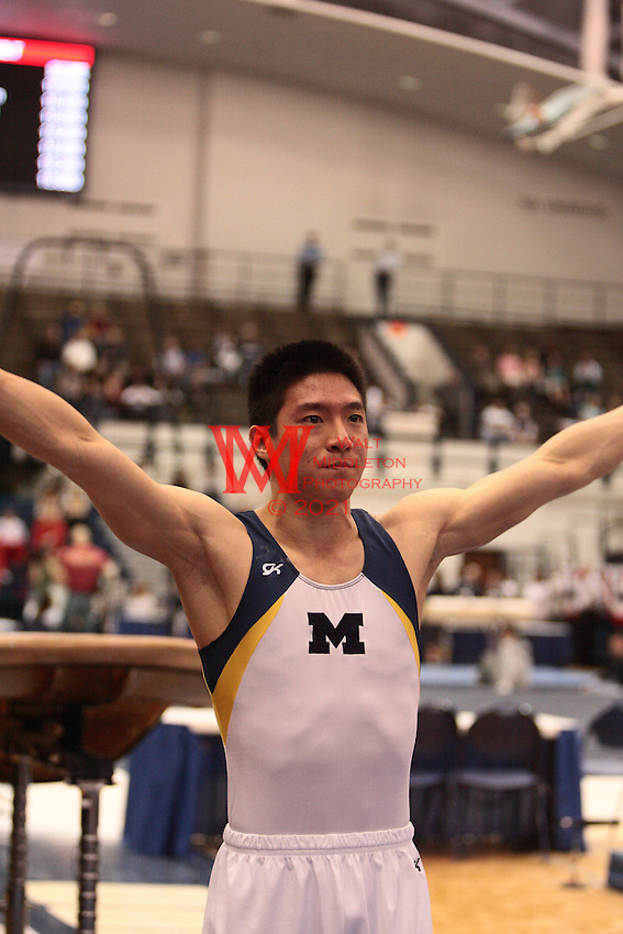 Men's Big Ten Gymnastics All around Championships 04-05-2008, @ Penn. State University