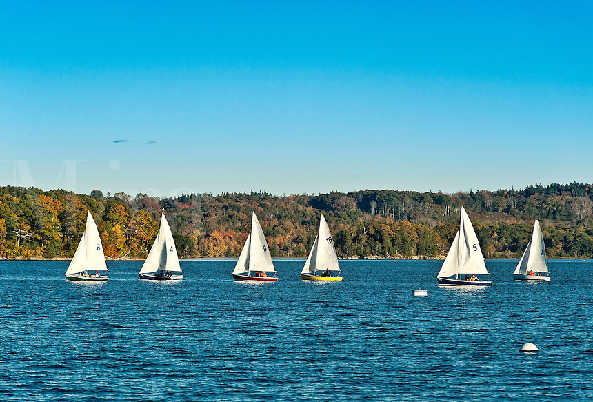 Small vessel sailing lessons, Castine, Maine, ME, USA