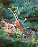 "Europe/France/Auvergne/Haute-Loire/Saint-Bonnet-le-Froid : Carré d'agneau au risotto d'épeautre - Recette de Régis Marcon du restaurant ""Le Clos des Cimes""  // France, Haute Loire, Saint Bonnet le Froid, Rack of lamb with spelled risotto , recipe Regis Marcon, three Michelin star restaurant, Restaurant des Cimes,"