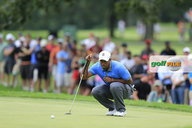 Tiger Woods (USA) on the 14th green during Friday's Round 1 of the 2013 Bridgestone Invitational WGC tournament held at the Firestone Country Club, Akron, Ohio. 2nd August 2013.<br /> Picture: Eoin Clarke www.golffile.ie