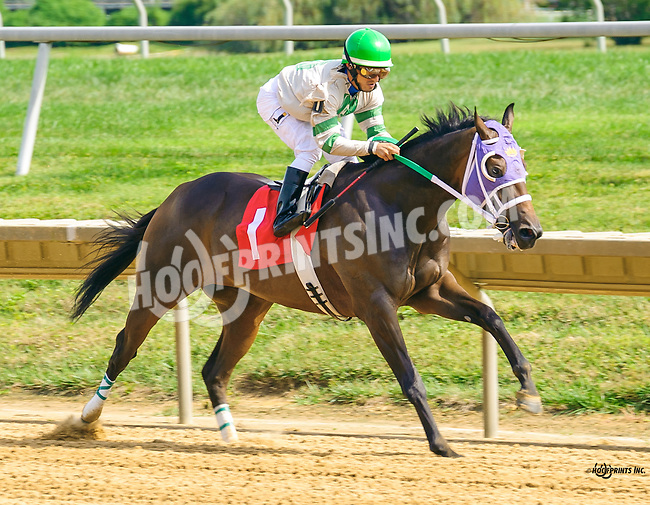 Church Monkey winning at Delaware Park on 9/21/16