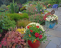 Vashon-Maury Island, WA: Flagstone patio featuring colorful pots with geraniums, chrysanthemums, and daisies edged by perennial garden beds