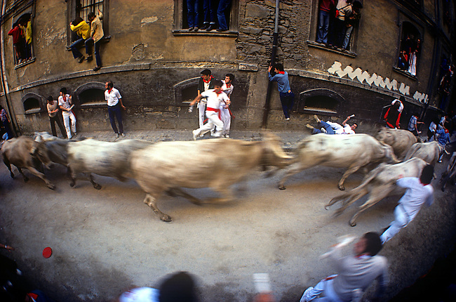 Running of the Bulls, Fiesta de San Fermin, Pamplona, Basque Region, Spain