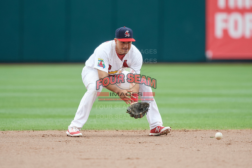 Springfield Cardinals shortstop Alex Mejia (7) fields a ground ball during a game against the San Antonio Missions on June 4, 2017 at Hammons Field in Springfield, Missouri.  San Antonio defeated Springfield 6-1.  (Mike Janes/Four Seam Images)