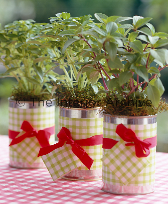 Recycled tin cans covered in wallpaper and tied with a red ribbon are used as plant pots