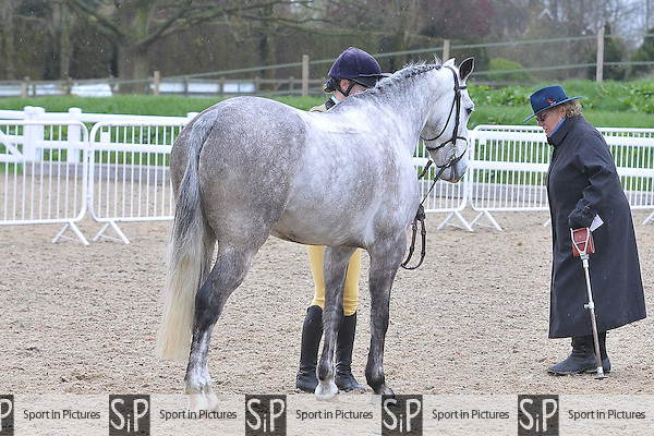 Class 5. BSPS Area 15 Essex april show. Brook Farm Training Centre. Essex. 16/04/2016. MANDATORY Credit Ellie Ingram/Sportinpictures - NO UNAUTHORISED USE - 07837 394578