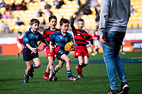 Action from the halftime rippa rugby match between Johnsonville and Poneke during the Mitre 10 Cup rugby match between Wellington Lions and Otago at Westpac Stadium in Wellington, New Zealand on Sunday, 19 August 2018. Photo: Dave Lintott / lintottphoto.co.nz
