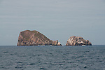 The famous dive site Gordon Rocks of the Galapagos. Famous site for seeing hammerheads and white and black tip sharks