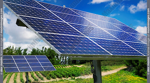 Solar panels with sunlight trackers used as an energy source at a farm in Milton, Ontario, Canada.