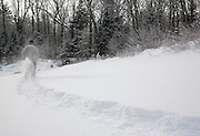Man snowshoeing along the Swift River in the White Mountain National Forest of  New Hampshire USA during the winter months