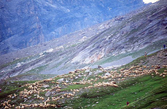 Sheepherders Festival, Gemmi, Switzerland