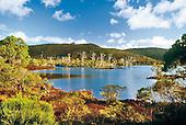 Lac de Yaté, forêt noyée