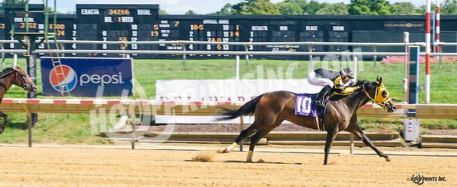 Quasante winning at Delaware Park on 8/22/16