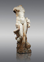 The Roman Sculpture Venus of Italica or Diosa Venus, found in 1940 near the theatre.  A famous Roman statue,  the &quot;Venus of It&aacute;lica&quot;, dates from the time of Hadrian (117-138 A.D.). Unlike the other Venus statues of the Era the Venus of It&aacute;lica does not try to hide her nudity but rather displays it. The state has rounded proportions with clearly defined anatomical features thanks to the exquisitely skilled carving, and the excellent quality of the marble. She is shown accompanied by a dolphin, and has a colocasia leaf in her left hand. <br />