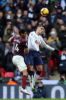 Erik Lamela of Tottenham Hotspur and Isaac Hayden of Newcastle United during Tottenham Hotspur vs Newcastle United, Premier League Football at Wembley Stadium on 2nd February 2019