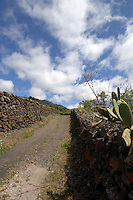 Canarian country lane with green hills and sky background,Santiago del Teide, Tenerife, Canary Islands.