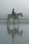 Horse and rider on the beach in Crescent City
