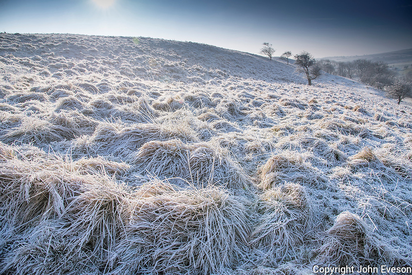 Frost on Long Knots, Dinkling Green, Whitewell, Clitheroe, Lancashire.