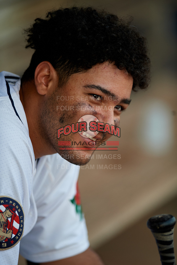 Connecticut Tigers designated hitter Gresuan Silverio (13) in the dugout during a game against the Lowell Spinners on August 26, 2018 at Dodd Stadium in Norwich, Connecticut.  Connecticut defeated Lowell 11-3.  (Mike Janes/Four Seam Images)