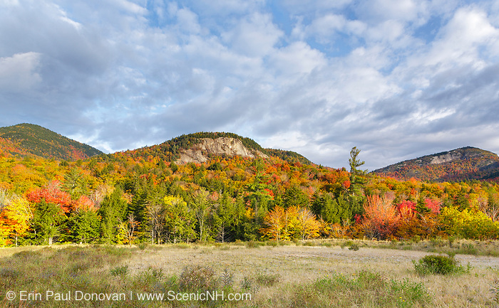 Autumn foliage along the Kancamagus Highway (route 112), which is one of New England's scenic byways in the White Mountains, New Hampshire USA. Table Mountain is on the right. The area under the mountain range is part of the proposed Northeast Swift Timber Project