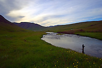 Atlantic Salmon Catch and Release Fly Fishing in Iceland. Salmon fisherman in Svarta river.