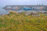 Fishing boats in coastal fishing village of Westport<br />Brier Island on DIgby Neck<br />Nova Scotia<br />Canada