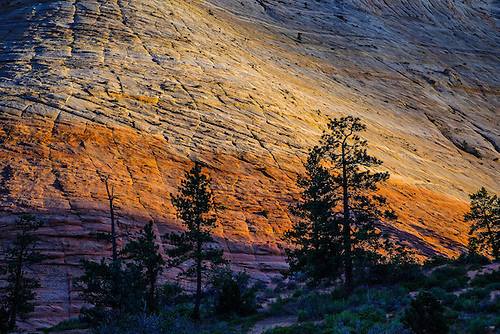 Unusual rock formations and steep and colorful sandstone canyon walls make up the landscape on the east side of Zion National Park, Utah