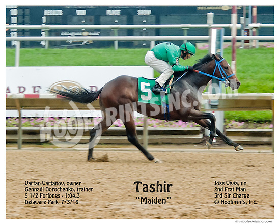 Tashir winning at Delaware Park on 7/3/13