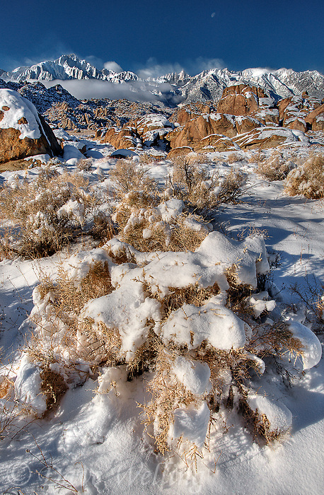 711700256 a winter storm in the alabama hills blankets the granite boulders and desert brush with a rare layer of brilliant white snow at sunrise in the eastern sierras of central california