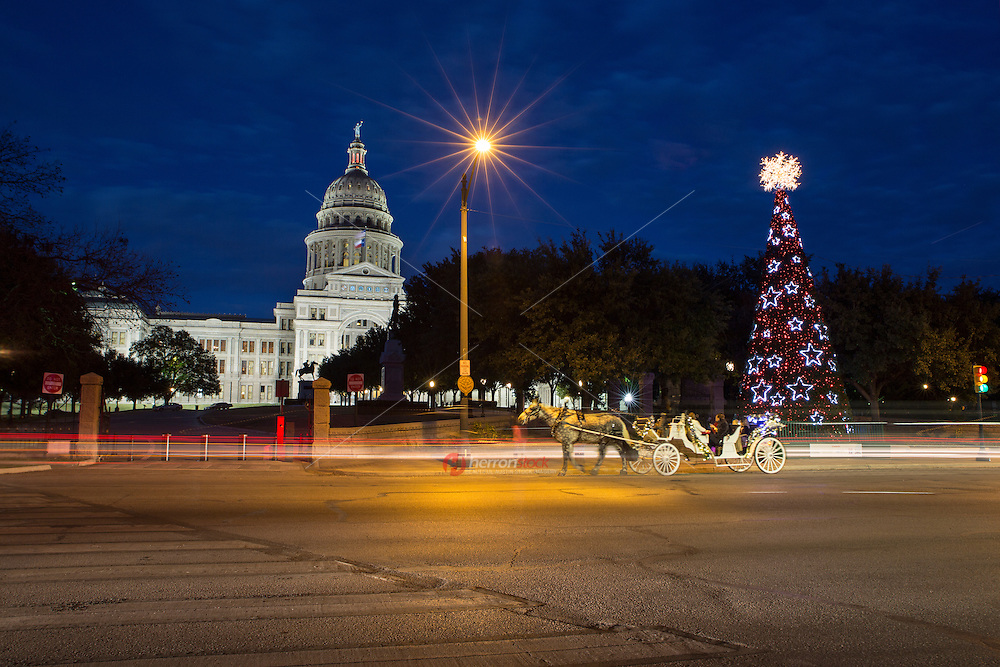 Photo of Texas Capitol Christmas Tree and horse drawn carriage ride in Austin Texas during Christmas time