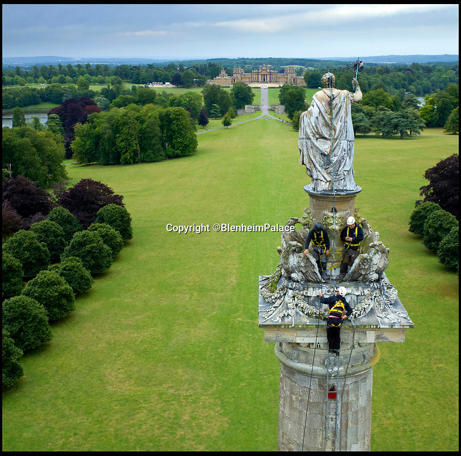 BNPS.co.uk (01202 558833)<br /> Pic: BlenheimPalace/BNPS<br /> <br /> A team of steeplejacks got a stunning bird's eye view of Blenheim Palace when they braved the hair-raising 135ft climb to the top of a 285-year-old column.<br /> <br /> The three-man team used ten 12ft ladders to scale the Grade II listed Column of Victory at the palace in Oxfordshire to carry out checks on a lightning conductor.<br /> <br /> The lofty job took the team a whole day to set up, carry out a continuity test to earth the conductor and dismantle afterwards.<br /> <br /> The conductor prevents the giant column from being damaged by lightning  and needs to be checked every ten years.<br /> <br /> A lead statue of the 1st Duke of Marlborough stands on top of the column, which was built to commemorate his famous military triumphs against the French and Bavarians during the War of the Spanish Succession.