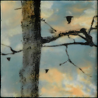 Mixed media encaustic photo transfer by Jeff League of bare tree with crow in background sky.