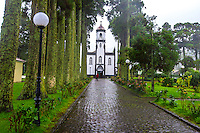 Fine Art Landscape Photograph of towering moss covered trees along a rainy path that leads to a quaint church in Ponta Delgada.