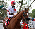 ARCADIA, CA: October 06: #1 Its Gonna Hurt and Tiago Pereira before the Breeders Cup win and you're in Speakeasy Stakes at Santa Anita Park on October 06, 2018 in Arcadia, California (Photo by Chris Crestik/Eclipse Sportswire)