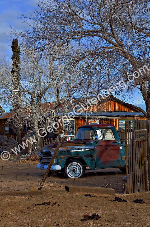 Early morning at the ranch, Mohave desert