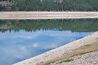 Kootenay Forest reflecting in the Kootenay River, British Columbia