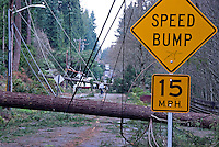 "Fallen trees and power lines from the December, 2006 windstorm in Puget Sound, completely block a street with a ""Speed Bump - 15 MPH"" sign alongside. On 168th Avenue, S.E., Bellevue, Washington State.....Photographed on digital media."
