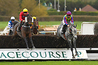 Lickpenny Larry (r) ridden by Robert Dunne leads Shimba Hills ridden by Aiden Coleman over the last first time around in The SW Catering Handicap Chase during Horse Racing at Plumpton Racecourse on 4th November 2019