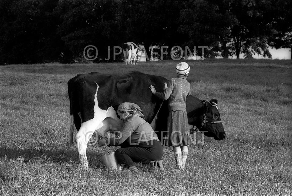 Poland, September, 1981 - A woman milks a cow at sunset in the Kolno region.<br /> Pologne, septembre 1981 &ndash; Pr&egrave;s de Kolno une femme et sa fille traitent leur vache avant la tomb&eacute; du jour.