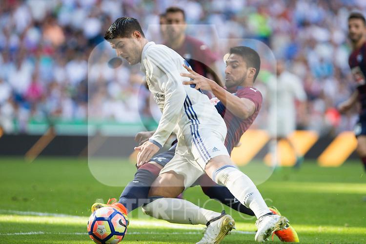 Real Madrid's Alvaro Morata and Eibar's Dani Garcia durign the match of La Liga between Real Madrid and SD Eibar at Santiago Bernabeu Stadium in Madrid. October 02, 2016. (ALTERPHOTOS/Rodrigo Jimenez)