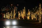 Auwatukee Xmas Lights