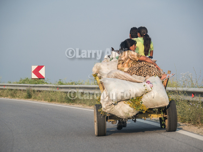 Gypsies with a horse-drawn cart travel on a the highway, Gurkovo, Bulgaria