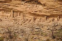 MALI Dogon Land , Dogon village with clay architecture at the Falaise a UNESCO world heritage site / MALI, etwa 20 km südoestlich von Bandiagara verlaeuft die rund 200 km lange  Falaise , UNESCO Welterbe, eine teilweise stark erodierte Sandsteinwand bis zu 300 m Hoehe  , hier befinden sich viele Dogon Doerfer in Lehmbau Architektur