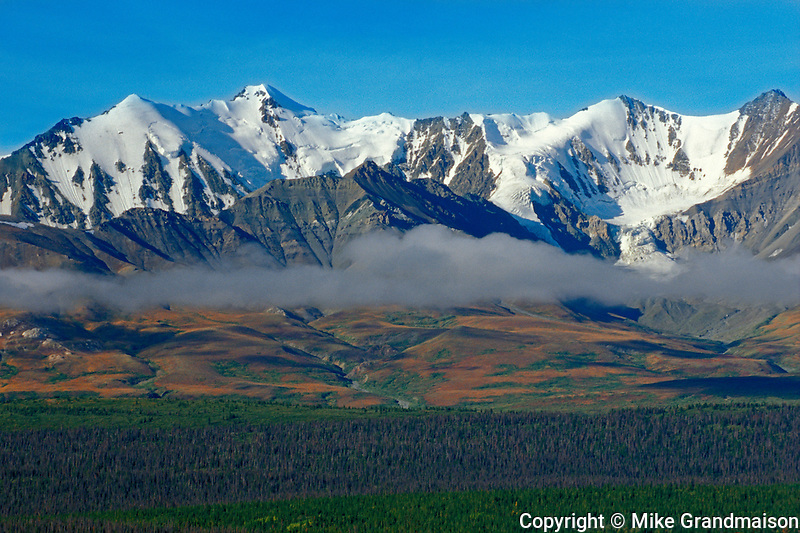 ST. Elias Mountains in late summer / eaarly fall and the boreal forest<br /> Kluane National PArk<br /> Yukon<br /> Canada