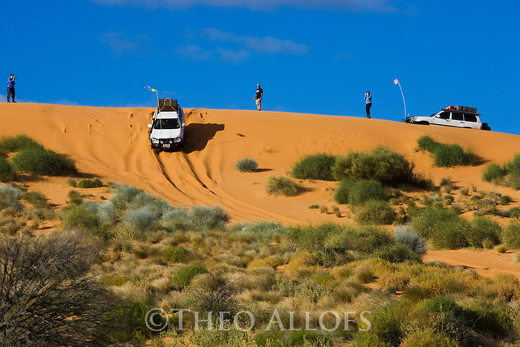 "Australia, Queensland, Simpson Desert; 4x4 vehicles and tourists on top of red sand dune (""Big Red"")"