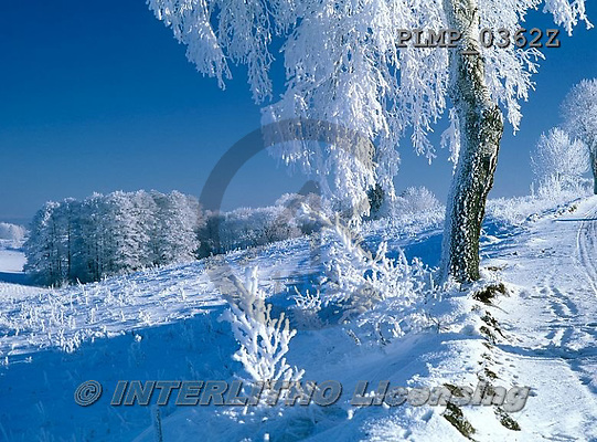 Marek, CHRISTMAS LANDSCAPES, WEIHNACHTEN WINTERLANDSCHAFTEN, NAVIDAD PAISAJES DE INVIERNO, photos+++++,PLMP0362Z,#xl#