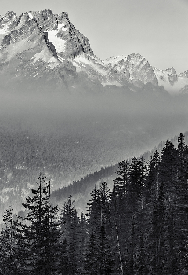 Smoke forms a layer between the forest and the Cascade Mountain range in this toned black and white image.
