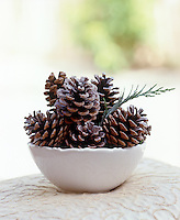 Detail of a white bowl filled with fir cones